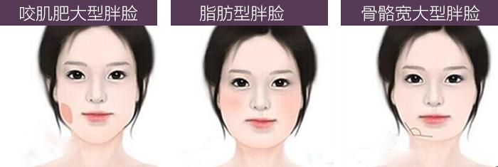 脸型.jpg